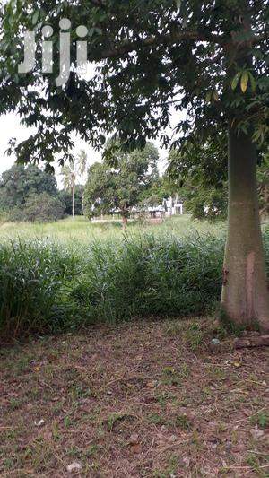 20 Acres for Sale Msambweni | Land & Plots For Sale for sale in Kwale, Ramisi