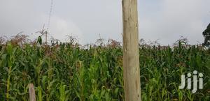 Prime 5 Acres Land for Sale Tugen Estate Moiben Eldoret | Land & Plots For Sale for sale in Uasin Gishu, Eldoret CBD