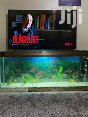 TV Stand Aquarium | Fish for sale in Nairobi, Karen