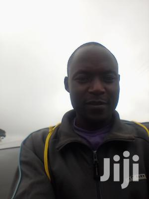 Landscaper/Team Leader (Experienced | Gardening & Landscaping CVs for sale in Nairobi, Kangemi