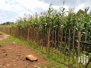Prime Plots for Sale in Kuinet Eldoret   Land & Plots For Sale for sale in Soy, Kuinet