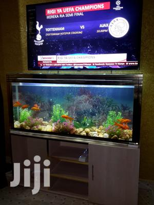 Customized Fresh Water FISH AQUARIUM (Fish Tank) + Stand | Fish for sale in Nairobi, Nairobi Central