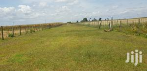 Prime 3 Acres for Sale in Kapjagir Eldoret   Land & Plots For Sale for sale in Ainabkoi, Kaptagat