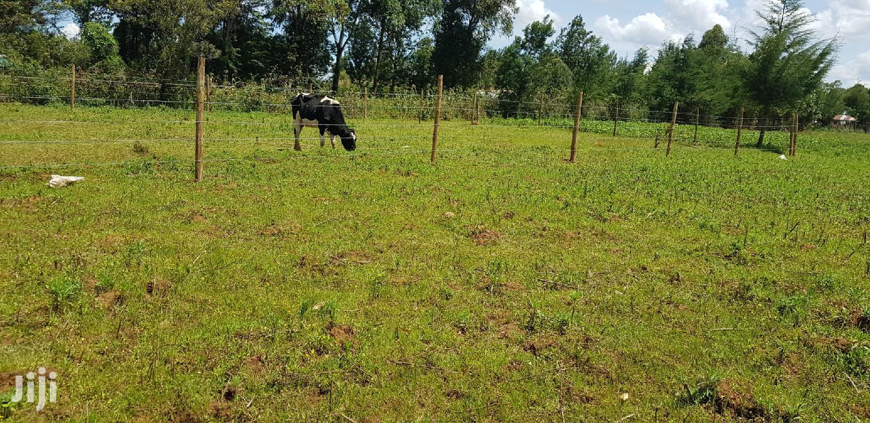 1⁄8 Plot For Sale In Kuinet Eldorer   Land & Plots For Sale for sale in Kuinet, Soy, Kenya