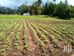 3 Acre Agricultural Shamba for Sale by Owner | Land & Plots For Sale for sale in Nyandarua, Nyakio