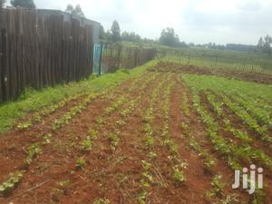 1/4 Plot In Chepkanga Eldoret Along Iten Road For Sale | Land & Plots For Sale for sale in Uasin Gishu, Eldoret CBD