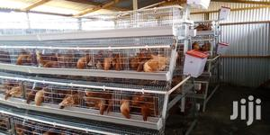 Poultry Chicken Cages For Layers. | Farm Machinery & Equipment for sale in Nairobi, Imara Daima
