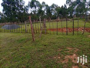 Very Prime Residential Plot on Sale Cheplasgei | Land & Plots For Sale for sale in Kapseret, Ngeria