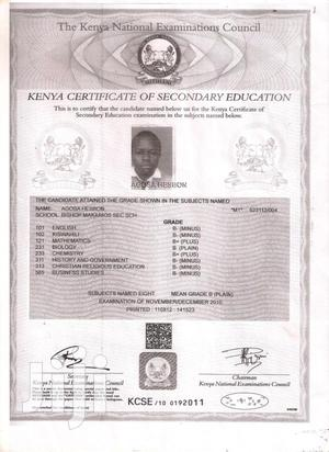 Data Entry Clerk | Technology CVs for sale in Nairobi, Donholm