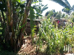 50*100 Plot With A Semi-permament House | Land & Plots For Sale for sale in Bungoma, Bukembe East