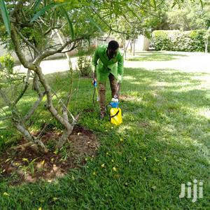 Rodent Control and Pest Control Services   Other Services for sale in Nairobi, Westlands
