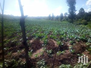 20 Acres for Sale in Nyandarua Machinery | Land & Plots For Sale for sale in Nyandarua, Kipipiri