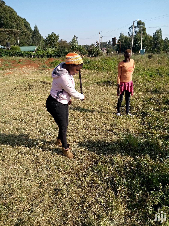 Landscaper/Team Leader (Experienced | Gardening & Landscaping CVs for sale in Kawangware, Nairobi, Kenya