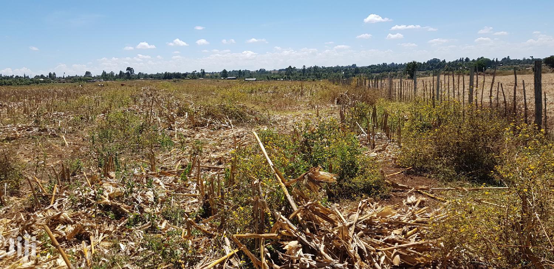 50 Acres For Sale In Kiplombe Kaplelach In Eldoret   Land & Plots For Sale for sale in Kiplombe, Turbo, Kenya