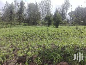 20 Acres of Land for Sale in Nyandarua Kipipiri. | Land & Plots For Sale for sale in Nyandarua, Kipipiri