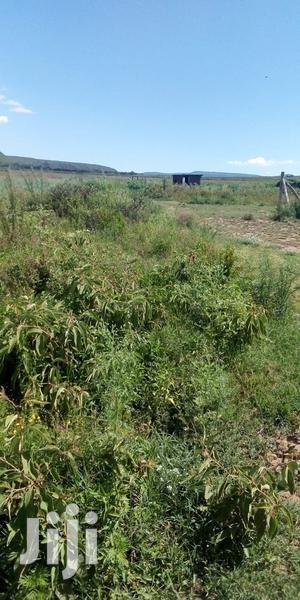 Kikopey 5acres for Sale | Land & Plots For Sale for sale in Nakuru, Gilgil