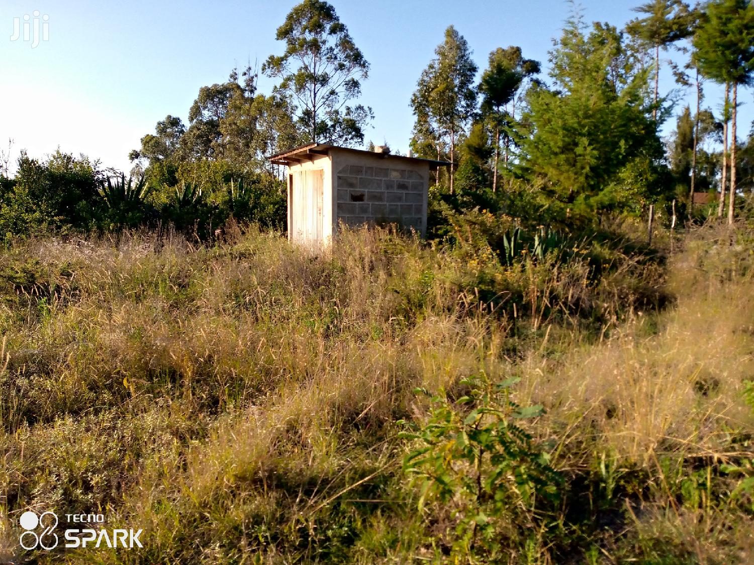 Selling House and a Land 4 Hectares