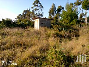 Selling House and a Land 4 Hectares | Land & Plots For Sale for sale in Nyeri, Naromoru Kiamathaga