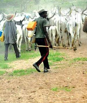 Herdsman Job Available | Farming & Veterinary Jobs for sale in Nairobi, Ruai