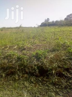Kiambu Land for Rent   Land & Plots for Rent for sale in Kiambaa, Cianda