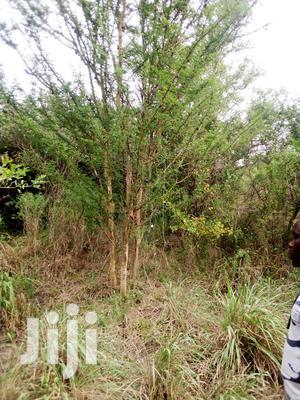 Malindi 20 Acres Land For Sale | Land & Plots For Sale for sale in Kilifi, Malindi