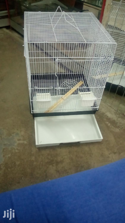 Birda Cages