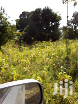 10 Acres Virgin Land Up For Quick Sale | Land & Plots For Sale for sale in Taita Taveta, Kasigau