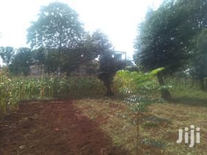 1/4 Acre for Rent on Kiambu Road   Land & Plots for Rent for sale in Kiambu / Kiambu , Thindigua/Kasarini