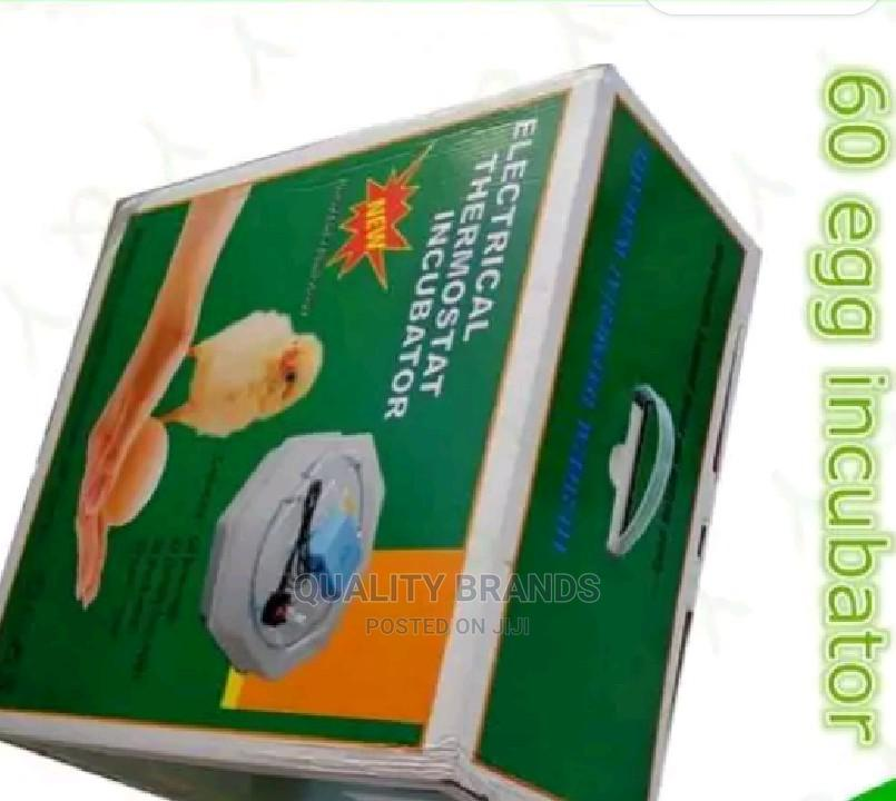 Warranted 60 Eggs Incubator