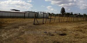 Seling 2 Parcels of 1 Acre at Wiumiririe | Land & Plots For Sale for sale in Laikipia Central, Ngobit