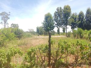 2 Pieces of Vacant Land 50*100   Land & Plots For Sale for sale in Nyandarua, Central Ndaragwa