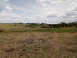 Queens Real Estate | Land & Plots For Sale for sale in Laikipia Central, Ngobit