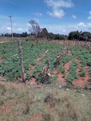 Plots on Sale at Kiwanja Opposite Airstrip Suera Area | Land & Plots For Sale for sale in Nyandarua, Gatimu