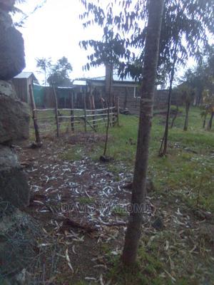 Land on Sale Kanguo Area Suera Area Near Kibathi | Land & Plots For Sale for sale in Nyandarua, Gatimu