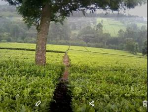 7 Acres For Longterm Lease   Land & Plots for Rent for sale in Kericho, Litein