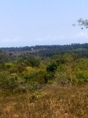 A Prime Land of 20 Acres for Sale in Kwale County | Land & Plots For Sale for sale in Kwale, Mkongani