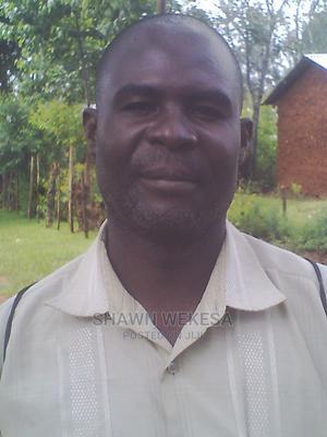 Herdsman CV Available | Farming & Veterinary CVs for sale in Bungoma, Kamukuywa