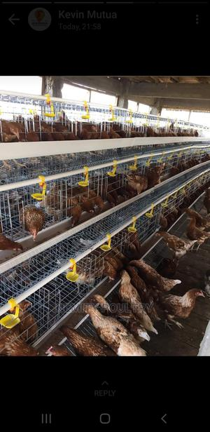 Chicken Cages on Sale | Farm Machinery & Equipment for sale in Nairobi, Imara Daima