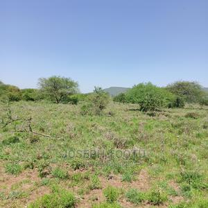 270acre Land for Sale | Land & Plots For Sale for sale in Kajiado, Iloodokilani / Amboseli