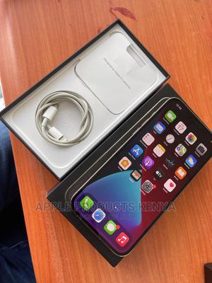 Apple iPhone 12 Pro Max 256GB Gray   Mobile Phones for sale in Nairobi, Nairobi Central