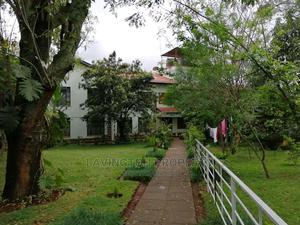 Very Impressive 2 Bedrooms Home Apartment Master Ensuit | Houses & Apartments For Rent for sale in Lavington, Maziwa