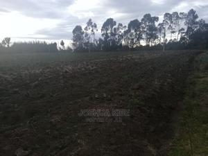 Prime 10 Acres of Land for Sale in Nyahururu Oljorok | Land & Plots For Sale for sale in Nyandarua, Karau