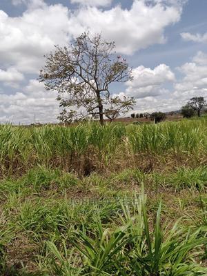 Prime 40 Acres for Sale in Kitale Matunda | Land & Plots For Sale for sale in Trans-Nzoia, Kitale