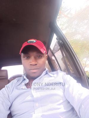 Driver and Mechanic With Experience | Driver CVs for sale in Nyeri, Nyeri Town