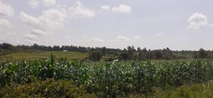 3 Acres Mabanga | Land & Plots For Sale for sale in Bungoma, Bukembe East