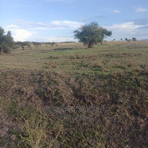 150acres for Sale | Land & Plots For Sale for sale in Kajiado, DalaleKutuk