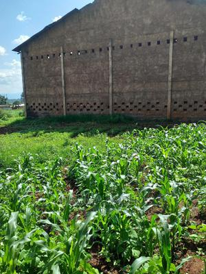 Factory for Sale | Commercial Property For Sale for sale in Trans-Nzoia, Kitale