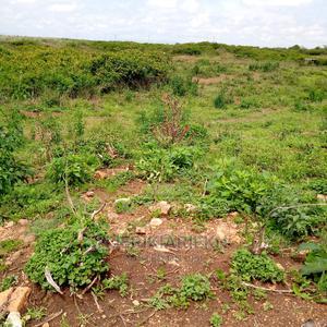 1⁄8 Acre Plot for Sale Juja Kalimoni   Land & Plots For Sale for sale in Kiambu, Juja