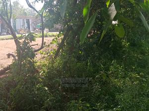 Land For Lease Favorable Terms And Conditions. | Land & Plots for Rent for sale in Kisumu West, Kogony