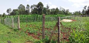 Prime Plot For Sale In Kitale | Land & Plots For Sale for sale in Trans-Nzoia, Kitale